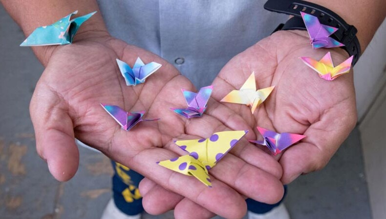 Incarcerated man's hands holding a variety of colorful origami cranes