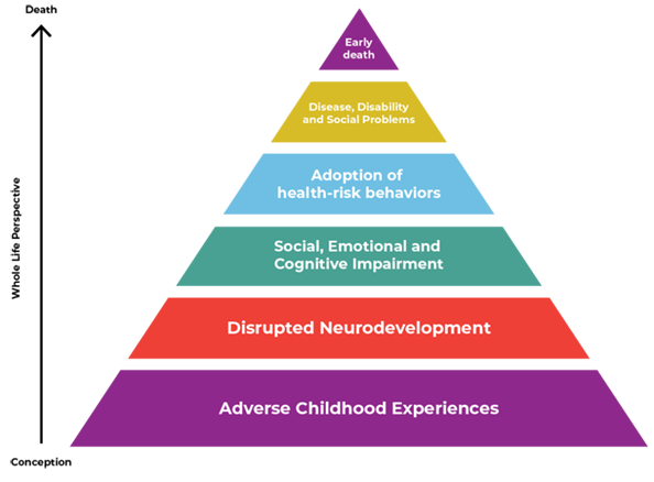 Pyramid chart of how Adverse Childhood Experiences influence Health and Well-being throughout the lifespan